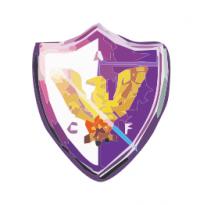 FC Fénix logo