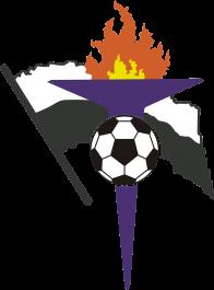 FC Gaz Metan Mediaş logo