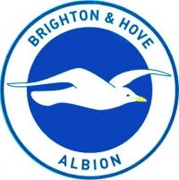 FC Brighton & Hove Albion logo