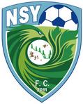FC Shenyang Zhongze logo