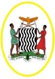 FC National Assembly logo