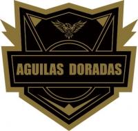 FC Itagüí logo