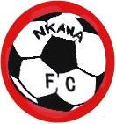 FC Nkana logo