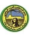 FC Al Mokawloon logo