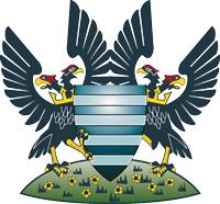 FC Salisbury City logo