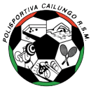 FC Cailungo logo