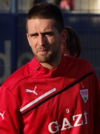 Vedad Ibišević photo