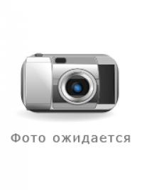 Yoel Chejanovic photo